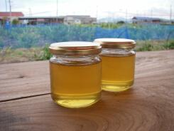 20100810日本蜜蜂のハチミツ