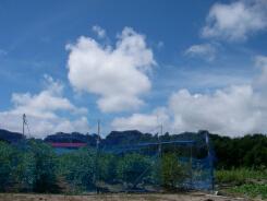 20100811台風接近中.jpg