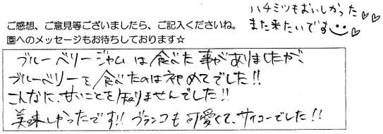 来園者様コメント7