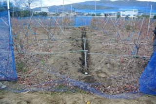 給水パイプ採掘