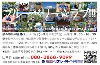 ハガキ2012jpeg2.jpg